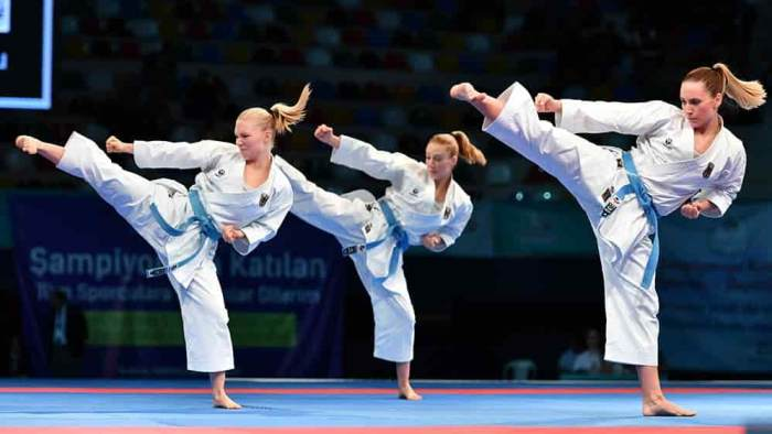Karate-Imagen-predeterminada.jpg